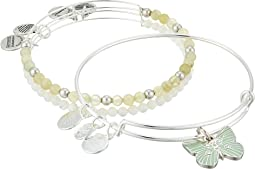 Butterfly Set of 3 Charm Bangle
