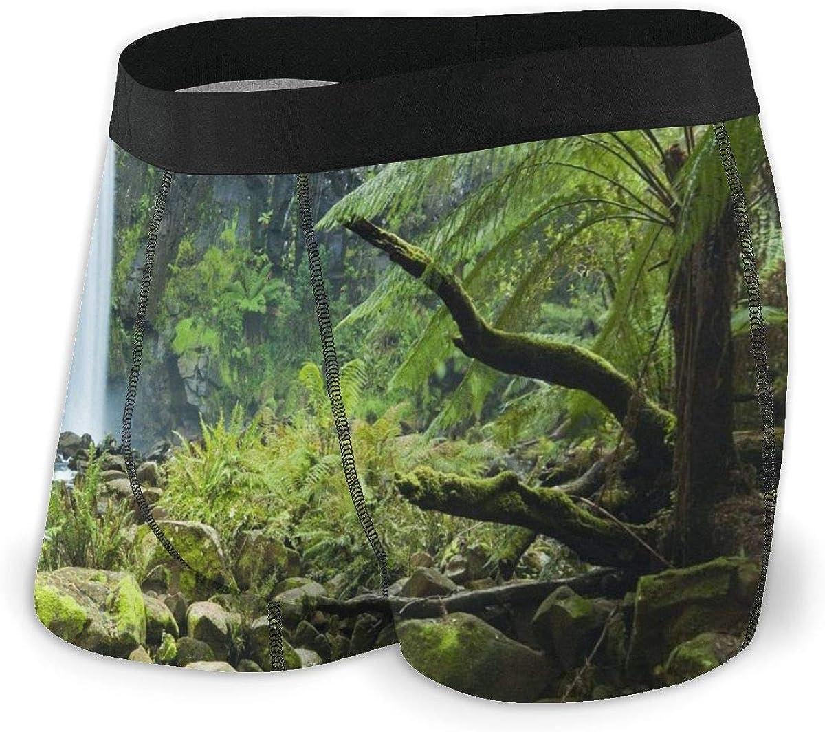 Mens Boxer Briefs Tropical Rainforest Breathable Underwear
