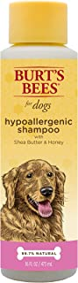 Burt's Bees for Dogs Natural Hypoallergenic Shampoo with Shea Butter and Honey| Puppy and Dog Shampoo