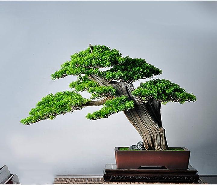 Bonsai artificiale albero di pino artificiale bonsai artificiale pianta in vaso kgdc B08XWZSH32