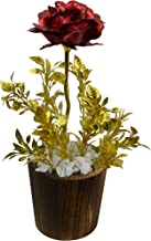 Fancy Mart Artificial Rose Flower with Tulsi in Wooden Small Round Pot (26 cm, Multi-Color)