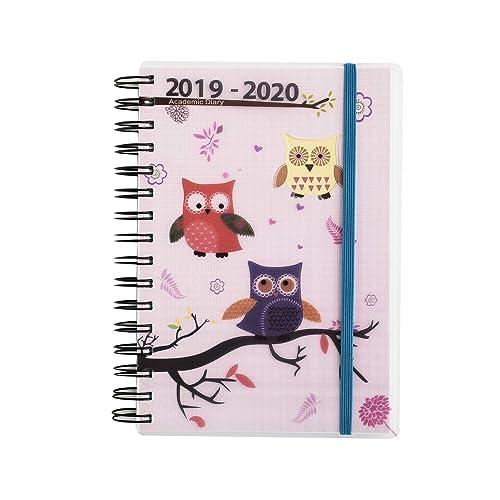 Modern 2019 2020 Mid Year Diary: Student Diaries: Amazon.co.uk
