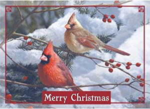 Legacy Publishing Group Deluxe Boxed Holiday Greeting Cards, Cardinals And Berries (HBX41956)