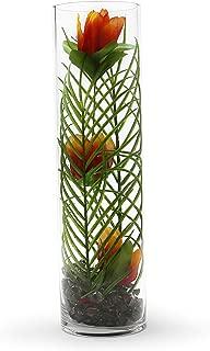 WGVI Cylinder Glass VASES, 5