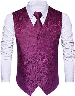 (ヒスデン) HISDERN スーツ ベスト メンズ ベスト ネクタイ ポケットチーフ 3点 セット スリム フィット 2ポケット 5ボダン 尾錠付き ビジネス 結婚式ベスト[ V3 Series ]