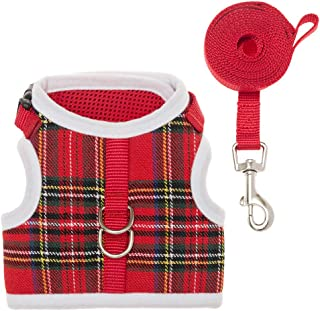 EXPAWLORER Escape Proof Cat Harness with Leash, Classic Plaid Adjustable Soft Mesh Kitten Harness Vest for Cats and Small Dogs Walking