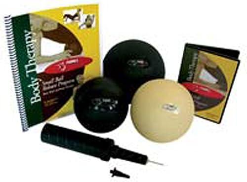 autorización Fitball Fitball Fitball cuerpo Terapia Bola  Con 100% de calidad y servicio de% 100.
