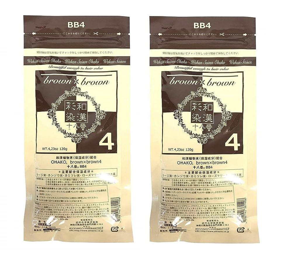 複雑なコイル基準【2個セット】グランデックス 和漢彩染 十八番 120g BB4