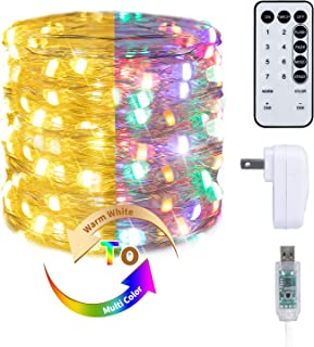 Fairy Lights with 2 Color Options, 33 Ft. 100 LED USB Twinkle Lights with Adapter and Remote, Firefly Lights for Craft Christmas Birthday Party, Warm White & Multicolor
