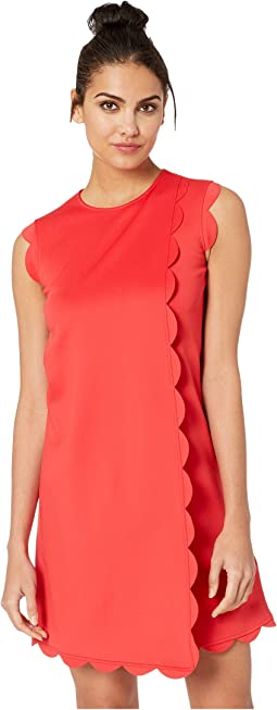 Women S Ted Baker Dresses Free Shipping Clothing