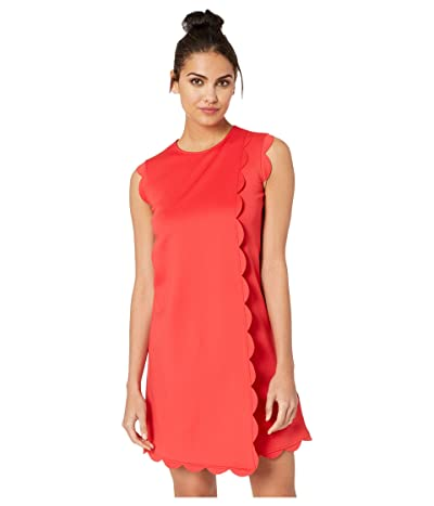 Ted Baker Jasmint Fresh Start Skater Dress (Red 1) Women