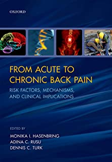 From Acute to Chronic Back Pain: Risk Factors, Mechanisms, and Clinical Implications (English Edition)
