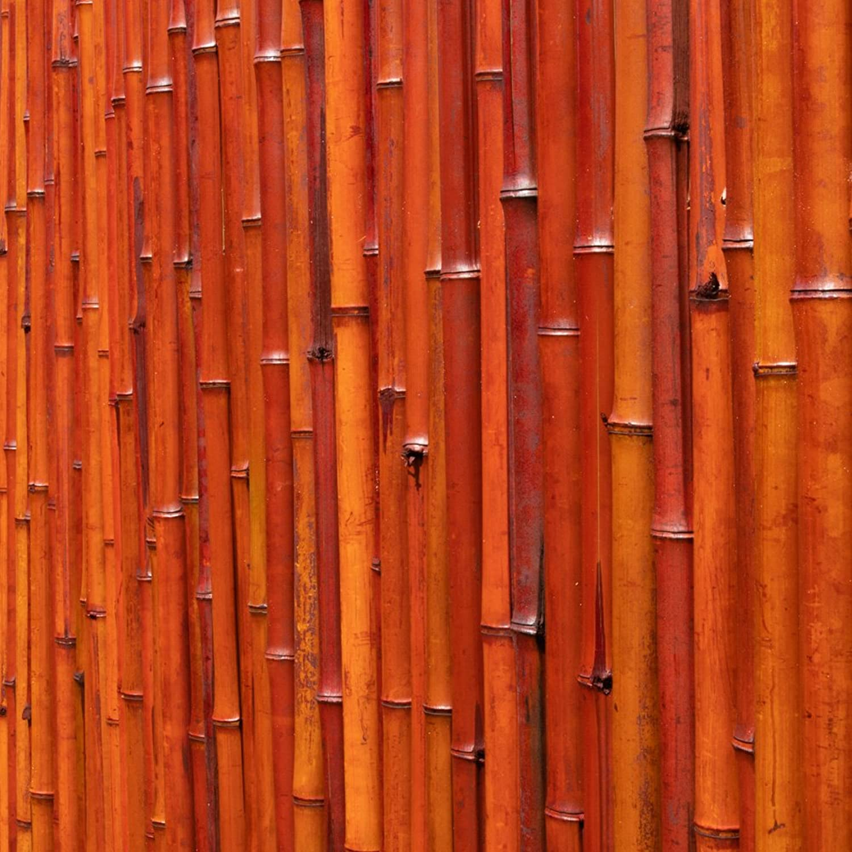 Sichtschutz Aus Bambusmatte - 1,8m x 1,9m - Rot, Papillon