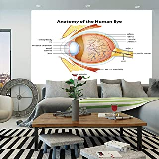 SoSung Educational Wall Mural,Human Eye Anatomy Cornea Iris Pupils Optic Nerves Graphic Print Decorative,Self-Adhesive Large Wallpaper for Home Decor 55x78 inches,Coral Mustard Baby Blue
