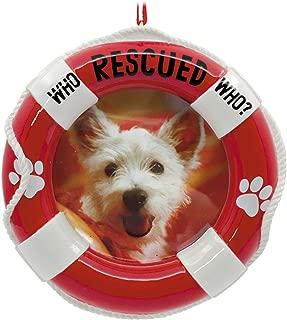 Hallmark Pet Adoption Picture Frame Ornament Pets