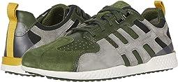 Green/Light Grey