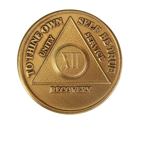 Alcoholics Anonymous AA Certificate of Sobriety 11 Month Award  Medallion Token