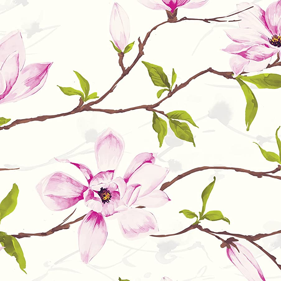 Jillson Roberts 24 Sheet-Count Premium Printed Tissue Paper Available in 8 Different Floral Designs, Magnolia Blossom