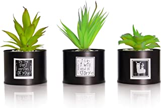 Be Sunny Office Decor for Women Desk - Cactus Decorations - Set of 3 Fake Succulent in Black Luxury Pots - Llama and Inspirational Signs Included - Desk Decorations for Women Office and Home Decor
