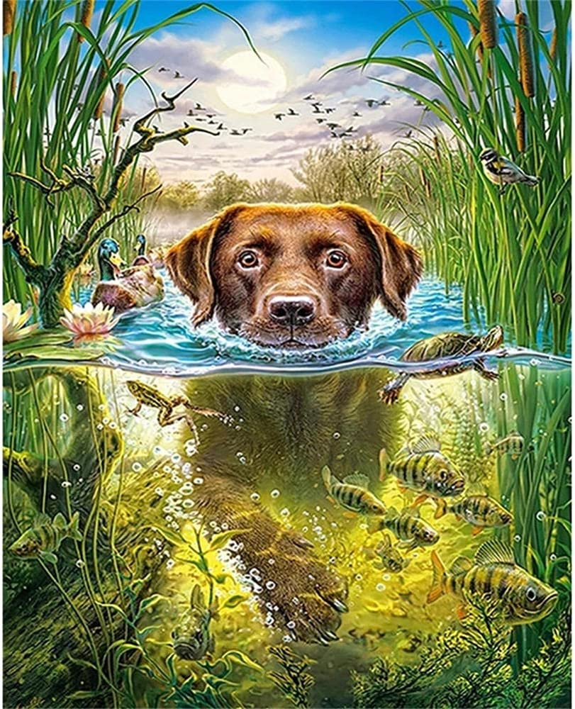 DIY Outlet sale feature 5d Diamond Painting Kit for Dog in San Diego Mall Adults, Water Dia Lying