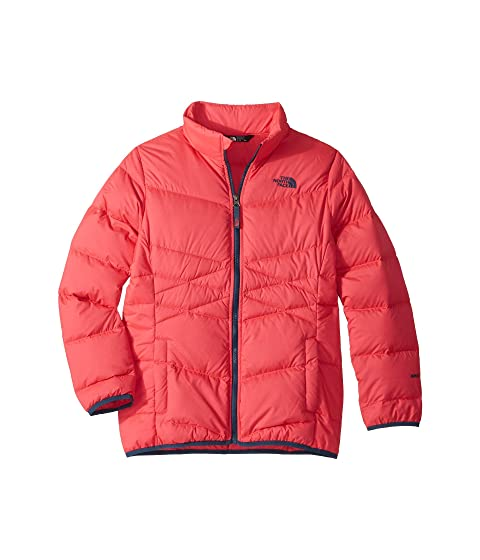 01fb0c9046 The North Face Kids Andes Down Jacket (Little Kids Big Kids) at ...