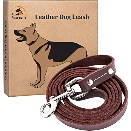 Leather Leash Pet Leash Dog Leash can be dyed to match any collar. Leather Lead