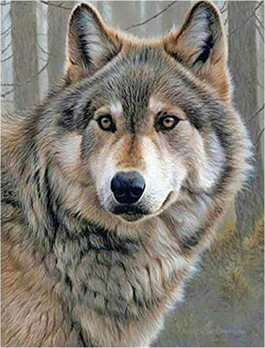 MXJSUA DIY 5d Diamond Painting by Number Kit Full Round Drill Diamond Art Paint with Beads for Home Wall Decor 30x40cm Wolf
