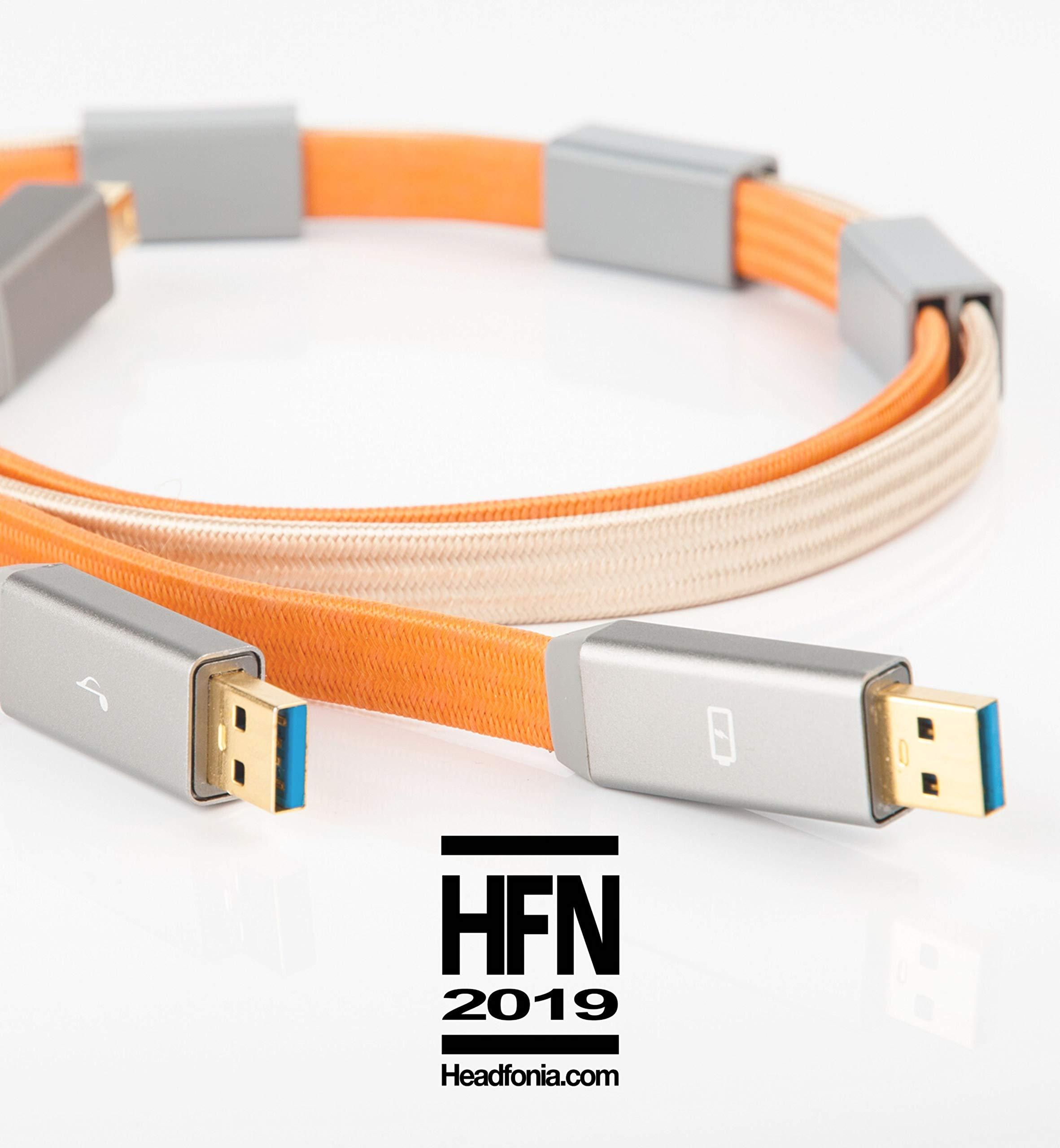 iFi Audio Gemini Dual Headed USB Cable