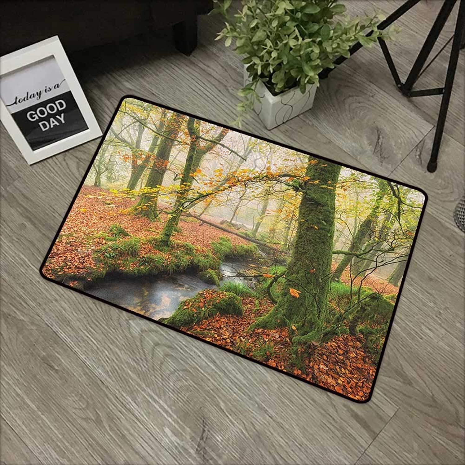 Meeting Room mat W35 x L59 INCH Woodland,Misty Autumn Woodland Stream at Golitha Falls on Bodmin Moor in Cornwall, orange Green Yellow Non-Slip, with Non-Slip Backing,Non-Slip Door Mat Carpet