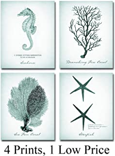 Coral, Starfish, Seahorse Prints - Set of Four Photos (8x10) Unframed - Makes a Great Gift Under $20 for Beach House Decor