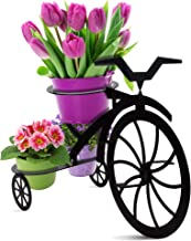 Decorative Bicycle Metal Plant Stand & Flower Pot Holder | Modern Outdoor & Indoor Plant Holder | Great Gift for Plant Lovers