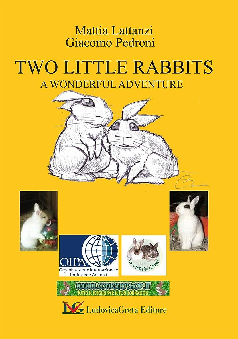 接続詞機械集まるTWO LITTLE RABBITS     : A WONDERFUL ADVENTURE (English Edition)