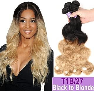 Ombre Brazilian Hair Body Wave Bundles 3pcs, Ombre Brazilian Virgin Hair Human Hair Weave Two Tone Black to Blonde (T1B/27,14