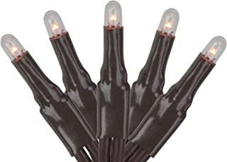 Darice Teeny Bulbs Multi Function 140 Light Set - Clear/Brown, Perfect for Decorating for the Holidays