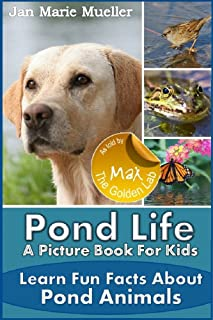 Best fun facts about ponds for kids Reviews