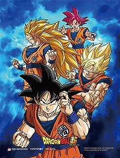 Dragon Ball Super Goku 3D Lenticular Wall Art Poster With Frame