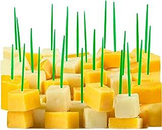 Best green plastic toothpicks Reviews