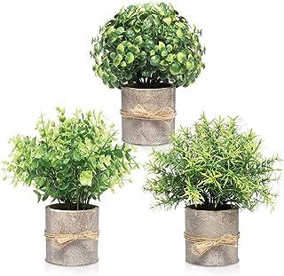 FORTIVO Pulp pots - Green