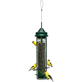 Squirrel Buster Finch Squirrel-proof Bird Feeder w/4 Metal Perches & 8 Feeding Ports, 2.4-pound Thistle/Nyjer Seed Capacity