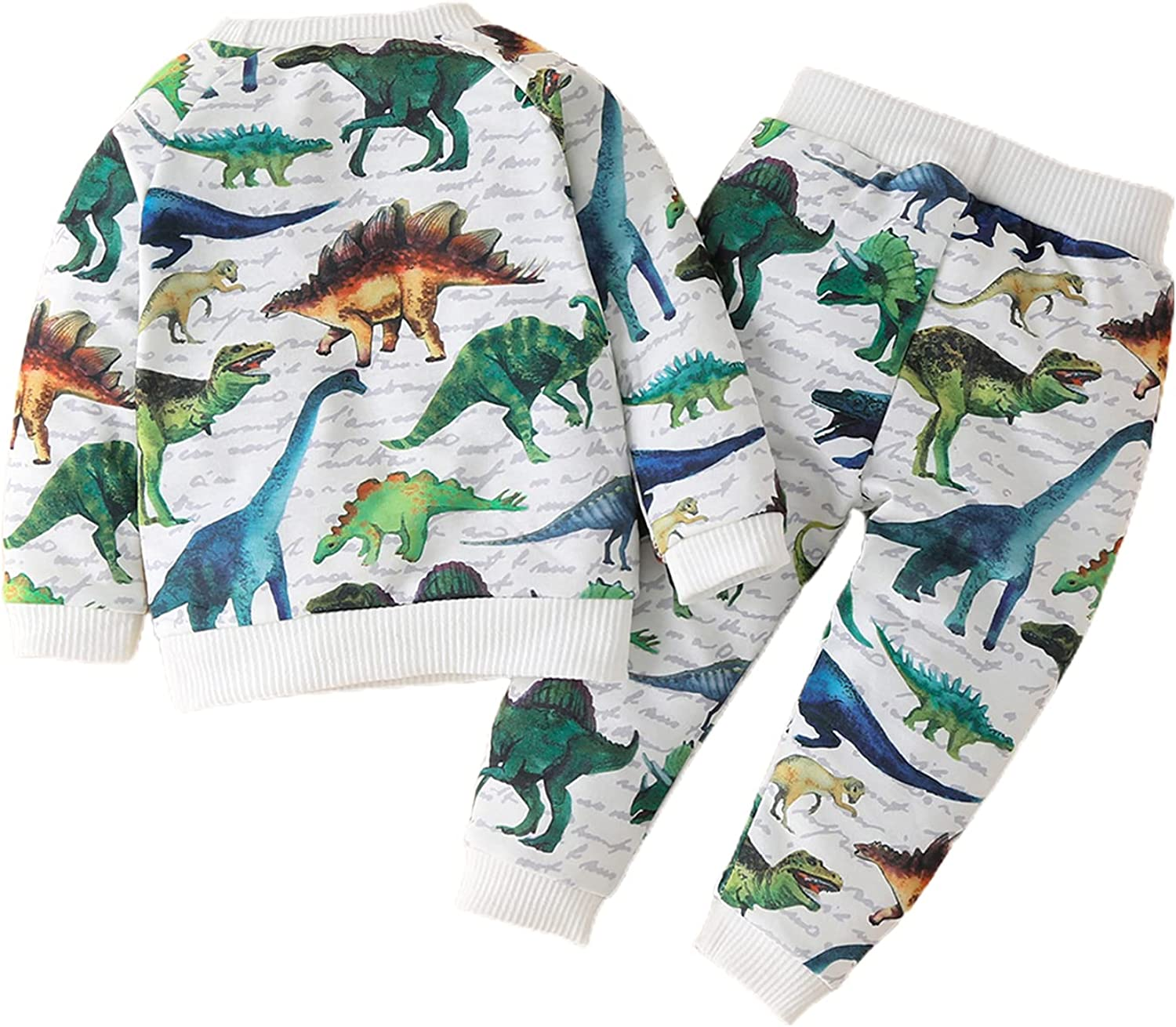 Boys Casual Two-Piece Clothes Set, Dinosaur Printed Pattern Pullover and Pants