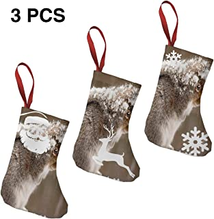 Christmas Stockings Suits Squirrel Snow Marvellous for Funny Xmas Party