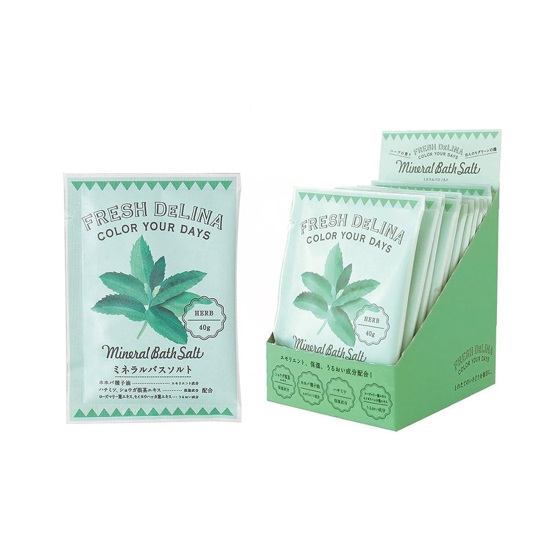スティック拒否平和なフレッシュデリーナ ミネラルバスソルト40g(ハーブ) 12個 (海塩タイプ入浴料 日本製 フレッシュなハーブの香り)