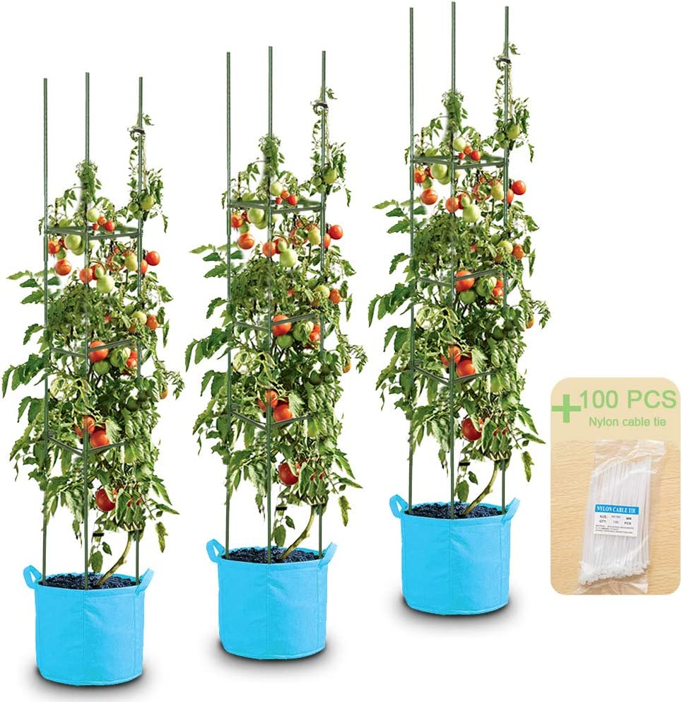 LEBOO 3-Pack 61inch Phoenix Mall Vegetable Trellis Omaha Mall Suppor Cages Plant Tomato