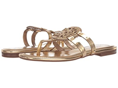 Circus by Sam Edelman Canyon (Pure Gold Paris Metallic) Women