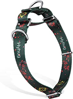Hyhug Pets Upgraded Escape Proof Martingale Collar for Dogs Daily Use Walking and Professional Training - Double Ring Can Attached ID Tags or Using for Regular Collar.