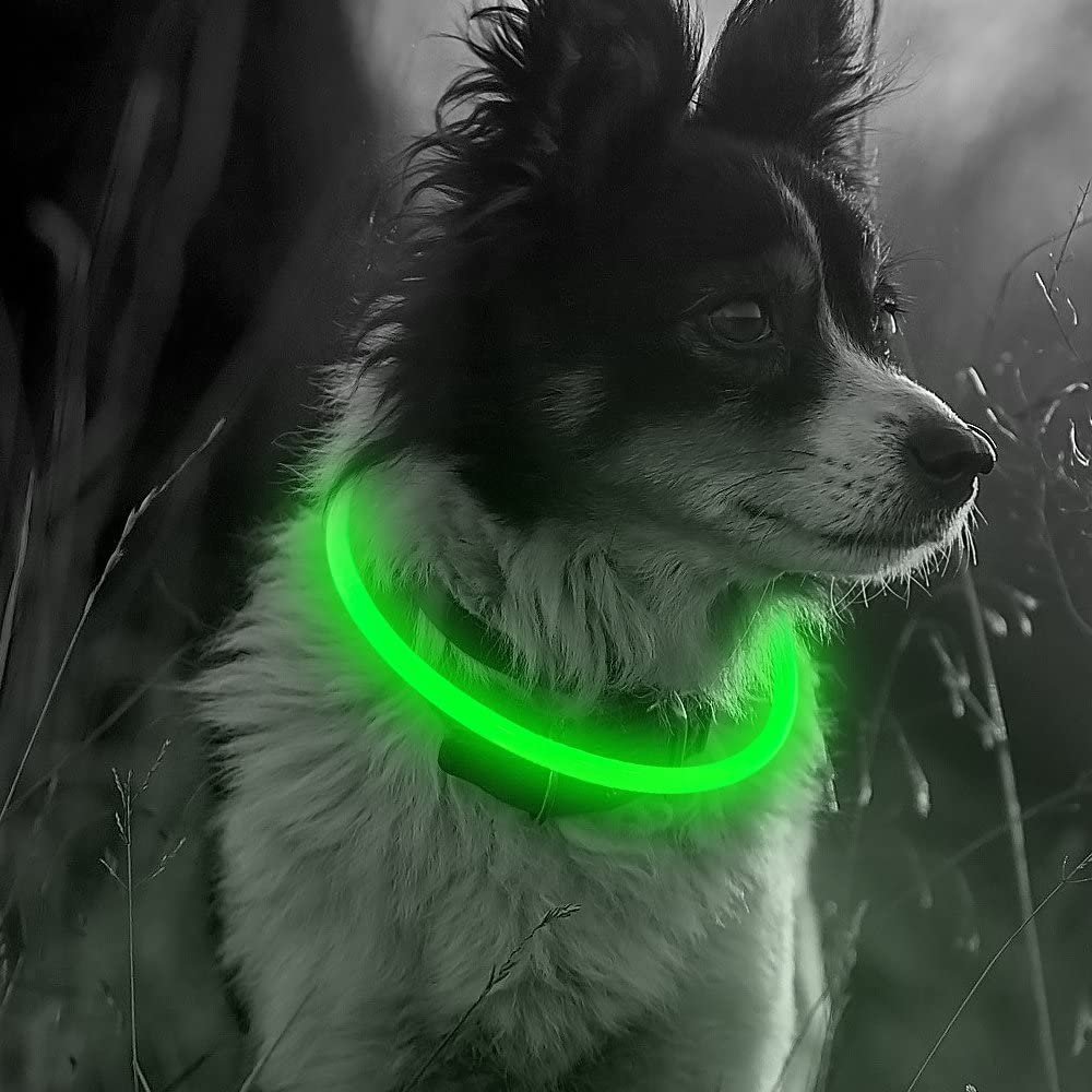 Illumifun Light Up Al sold out. Dog Collar Rechargeable Collars - LED Free shipping anywhere in the nation USB