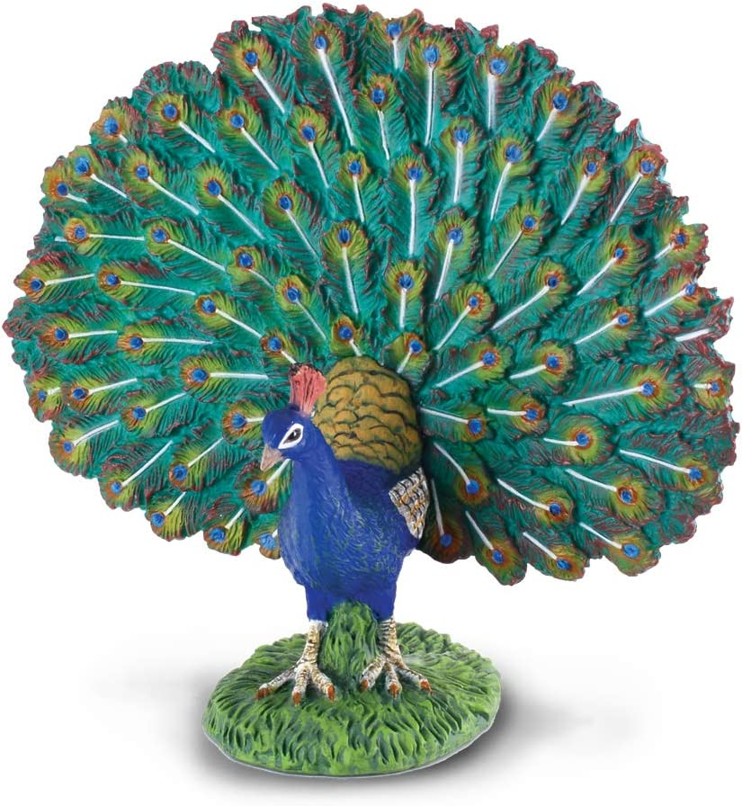 CollectA Farm Life Peacock Toy Figure - Authentic Hand Painted Model, 4