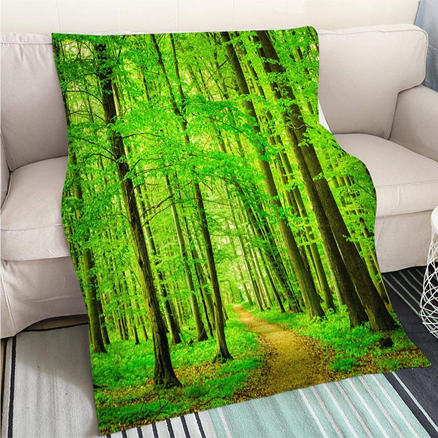 Breathable Flannel Warm Weighted Blanket Beech Tree Forest Path Perfect for Couch Sofa or Bed Cool Quilt