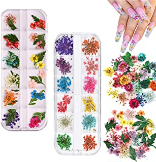 2 Boxes Dried Flowers for Nail Art, KISSBUTY 24 Colors Dry Flowers Mini Real Natural Flowers Nail Art Supplies 3D Applique...