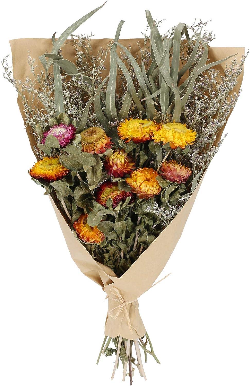 DWANCE Flores Secas de Crisantemo Flores Secas Naturales Decoracion Ramo de Margaritas Ramos de Flores Secas con Hoja Eucalipto Flores para Regalo del día del Padre Hogar Bodas Decorativas